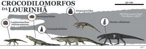 Novidades sobre crocodilomorfos que habitaram a Lourinhã