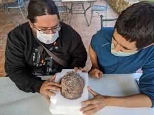 Investigadores do Museu da Lourinhã escavam os últimos ovos dinossauros da Europa
